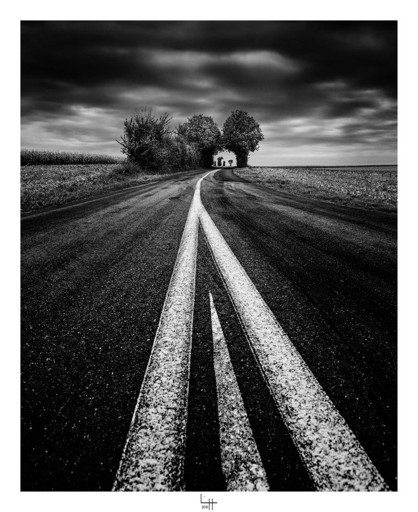 Sur la route de Thiré by Lionel HUG