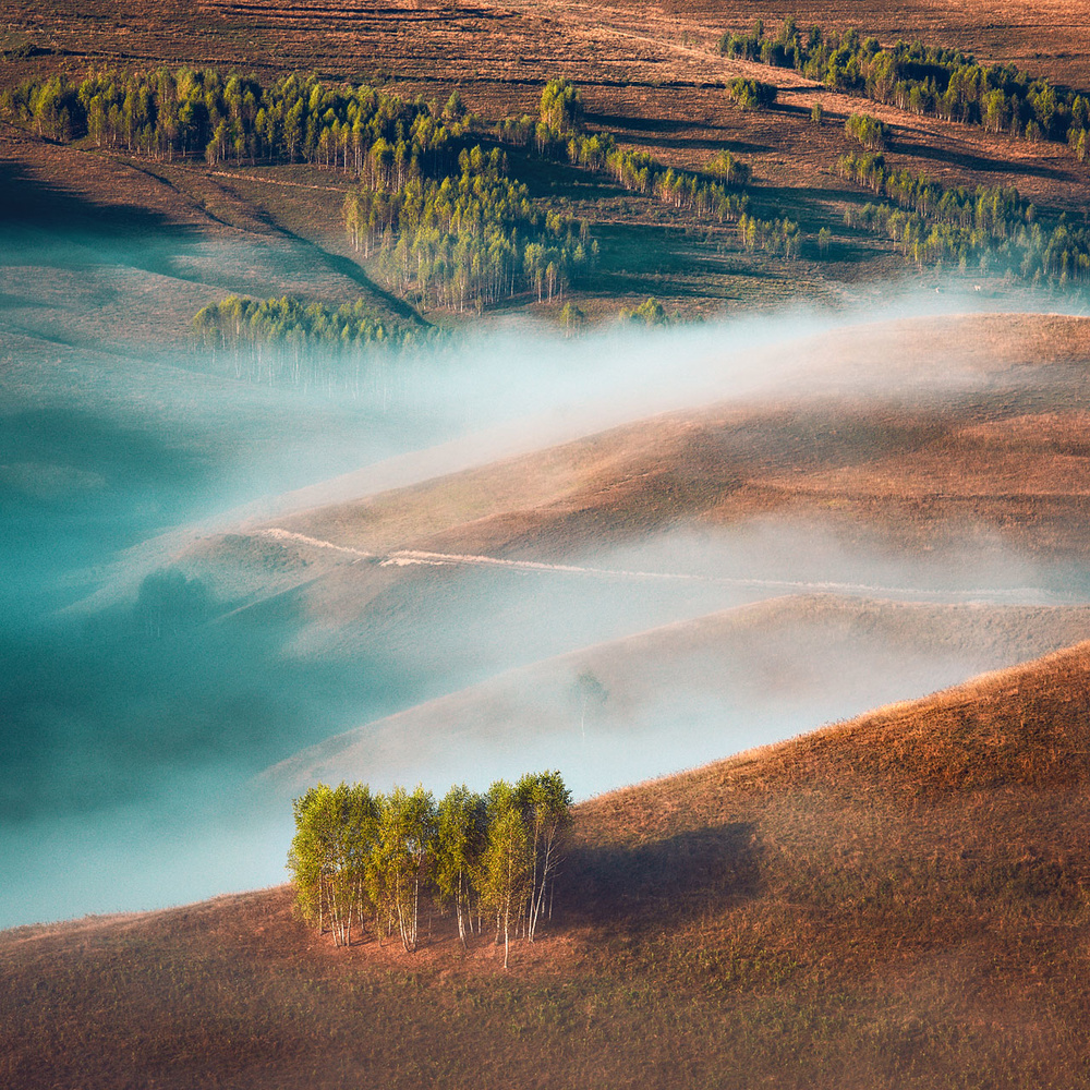 Layers by Paulian Prajitura