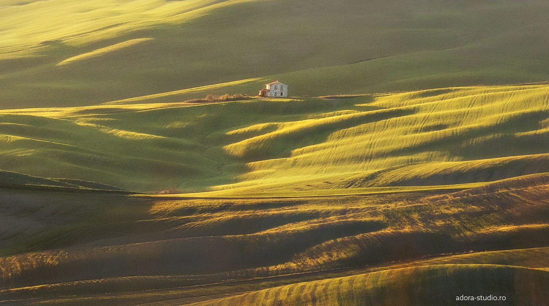 Tuscany by Paulian Prajitura