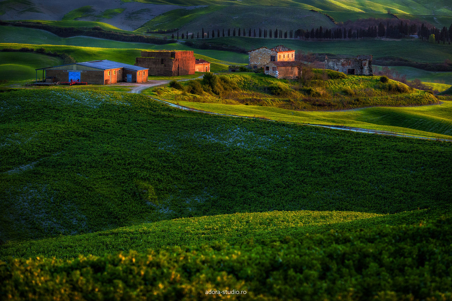 Countryside in Tuscany by Paulian Prajitura