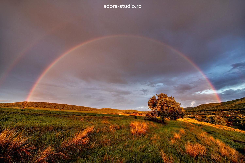 Rainbow by Paulian Prajitura