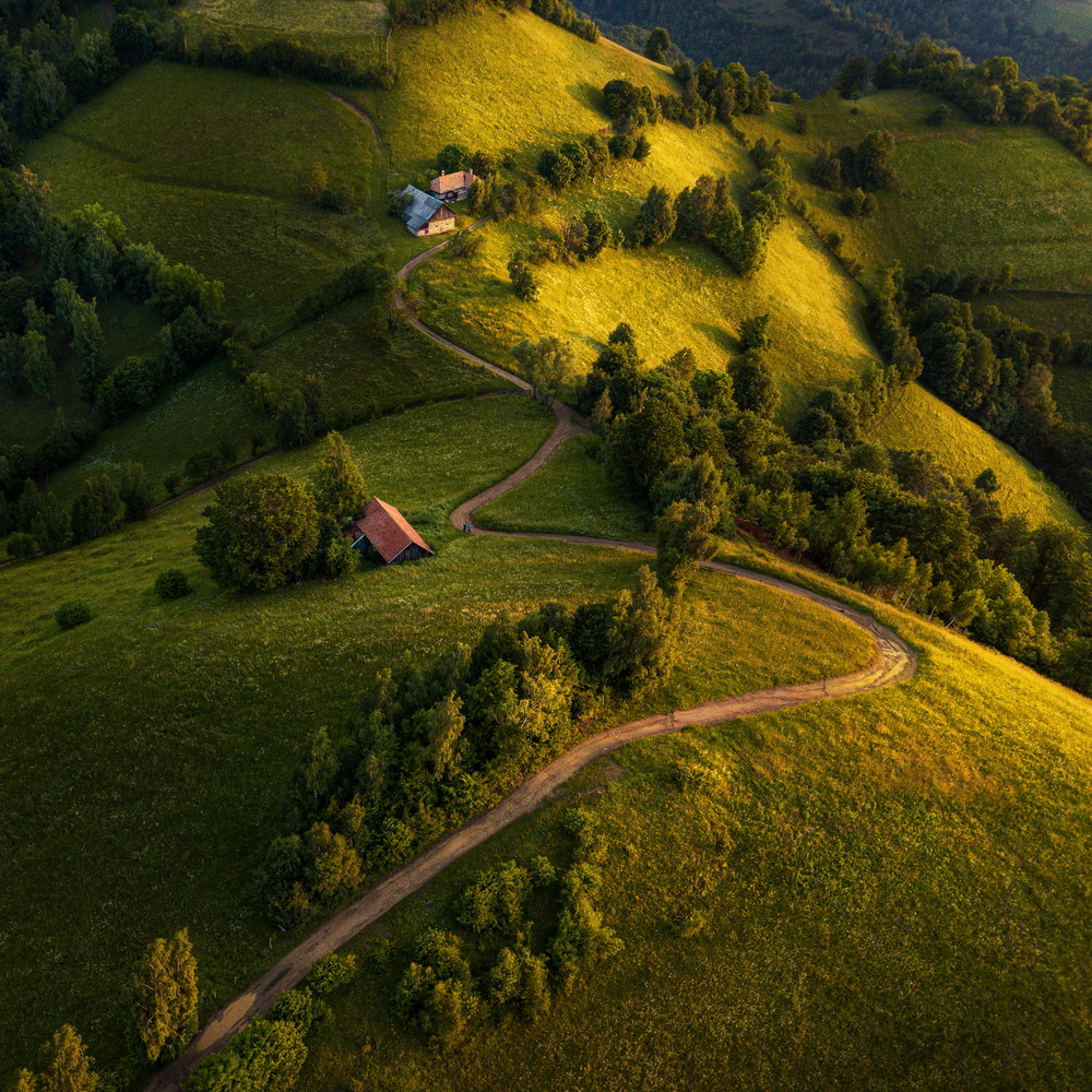 Morning road by Paulian Prajitura