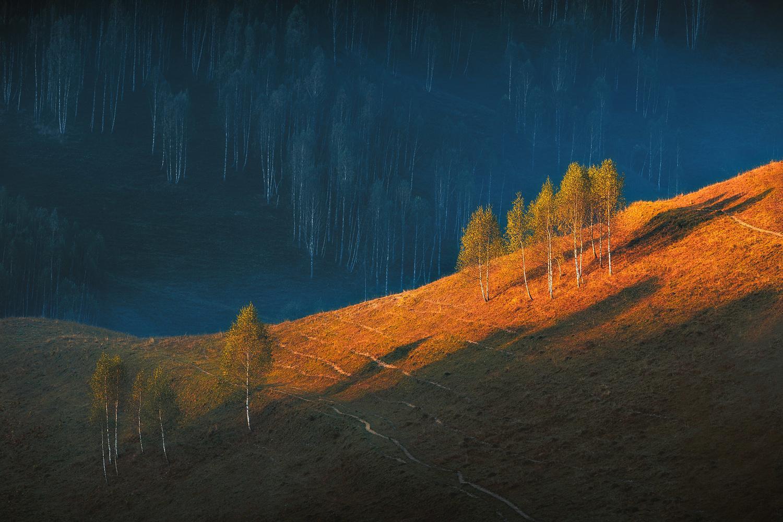 Sunrise light by Paulian Prajitura