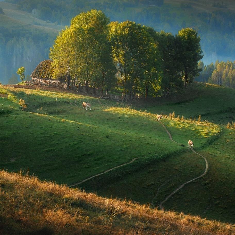 Rural Transylvania by Paulian Prajitura