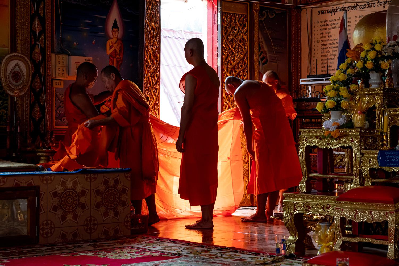novice monks by Stephen Scully
