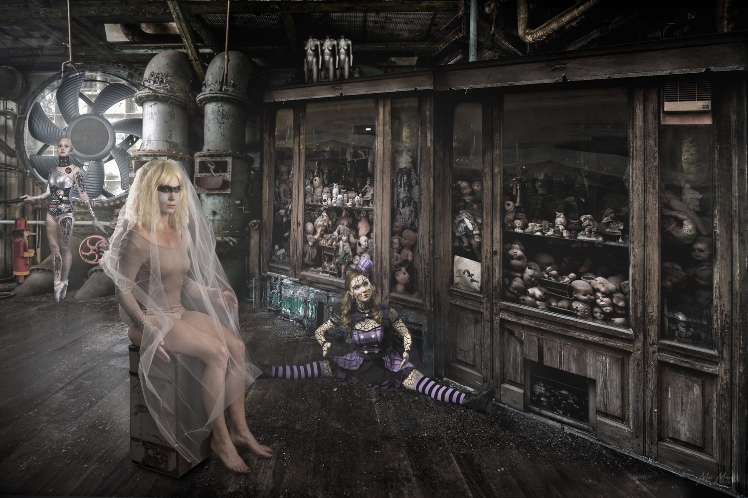 The Doll House by Mike Mahoney