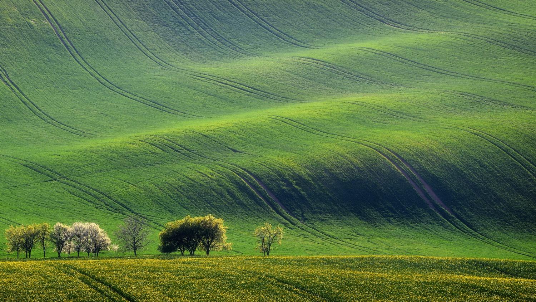 Rolling Fields by Martin Jurák