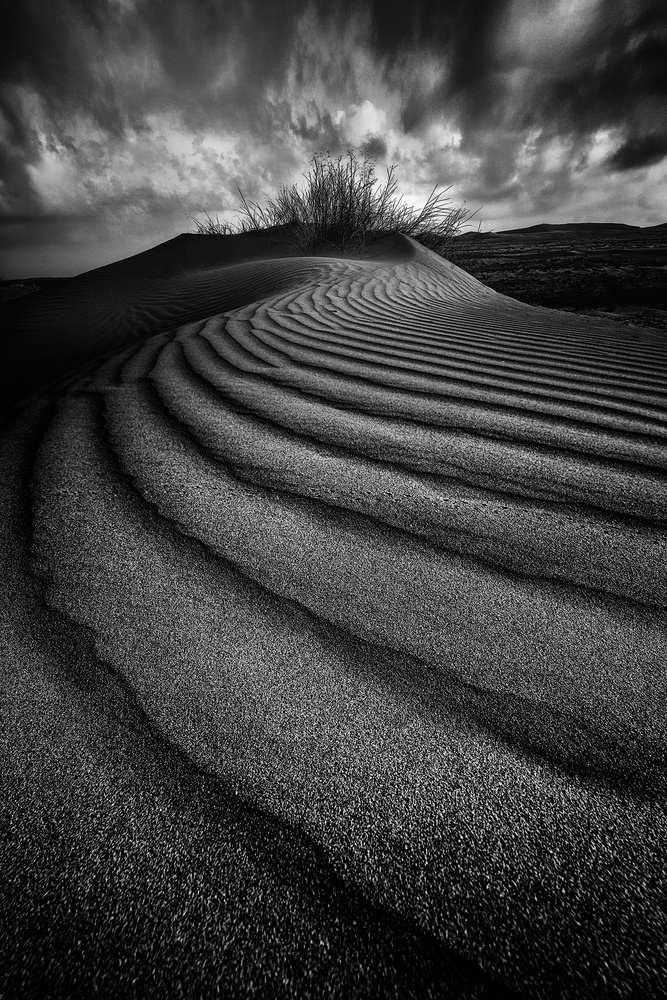 Curves of sand by Alon Jacobi