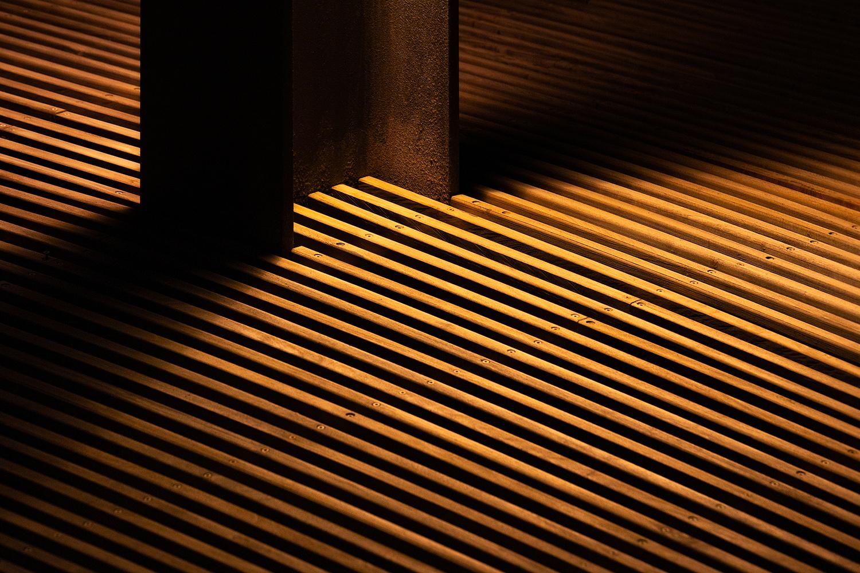 Gold by Alon Jacobi