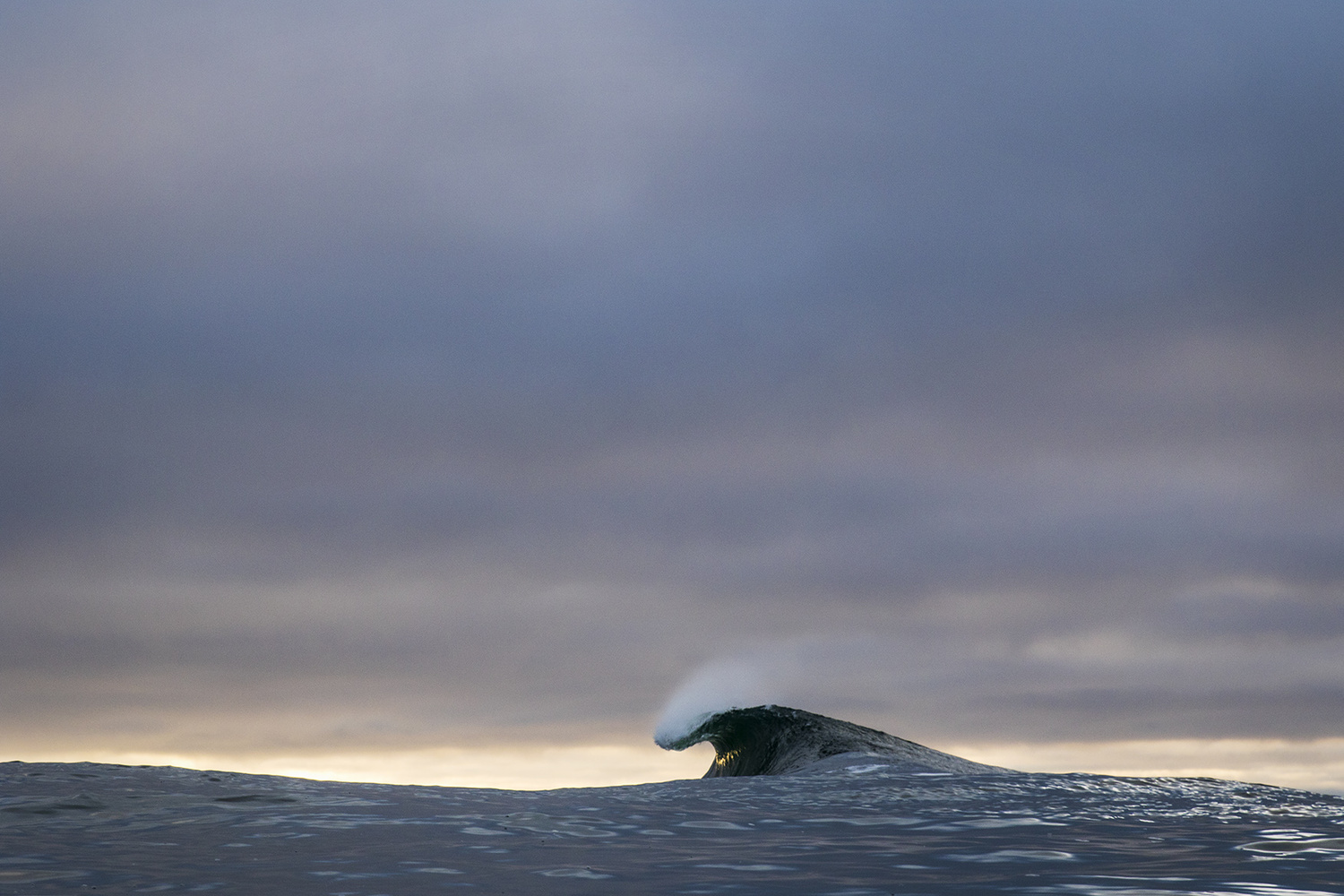 Perfect Wave by Marcus Paladino