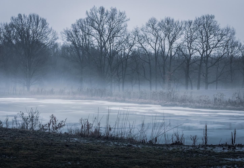 Misty Countryside by Daniel Frost