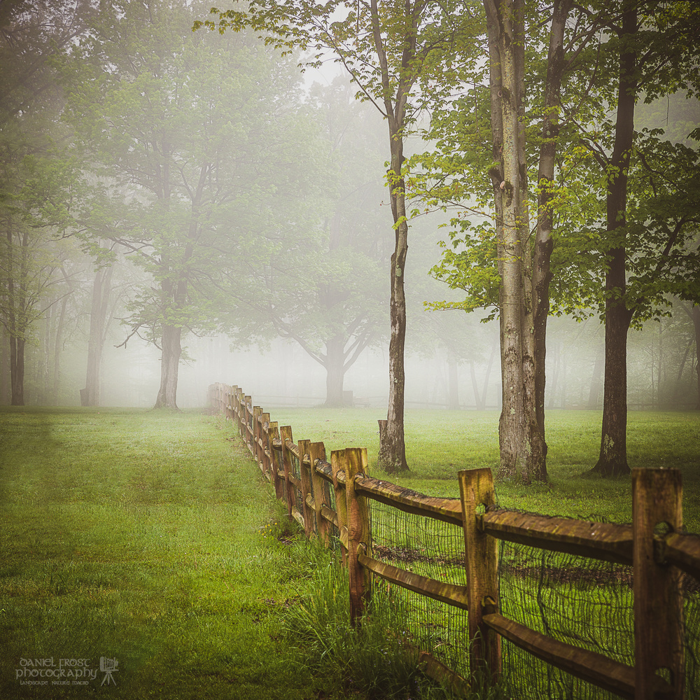Foggy morning in Ohio by Daniel Frost