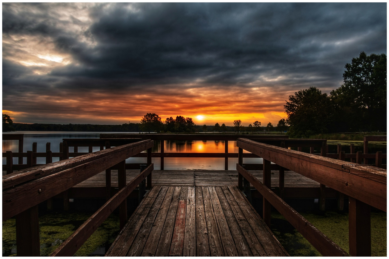 Mosquito Lake State Park by Daniel Frost
