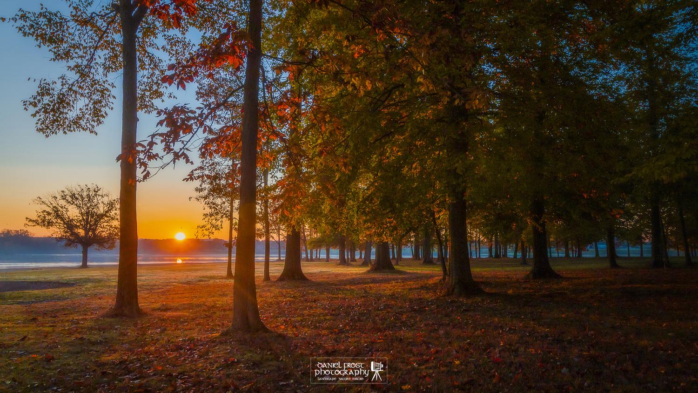 Lake Sunrise by Daniel Frost