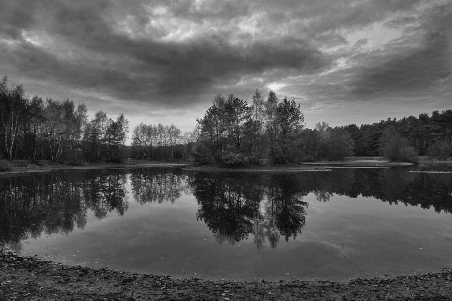 Night is falling over the pond in the woods by Kandid Letters