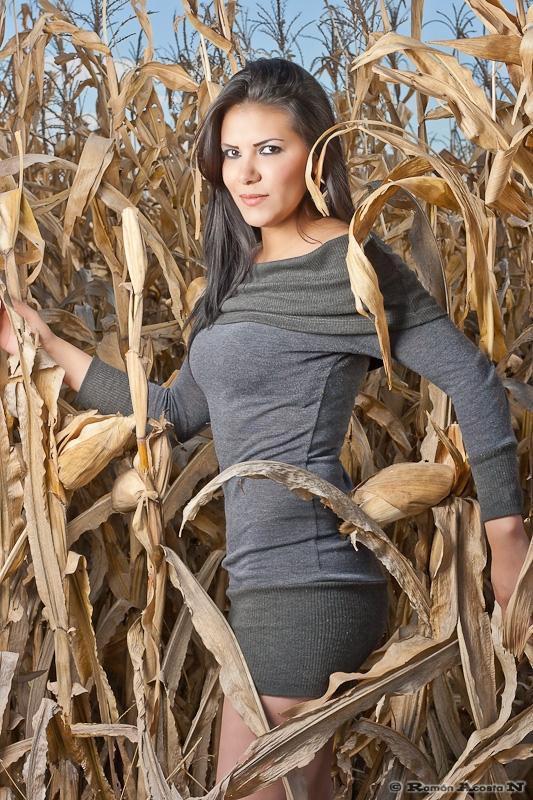 Among the corn stalks by Ramon Acosta