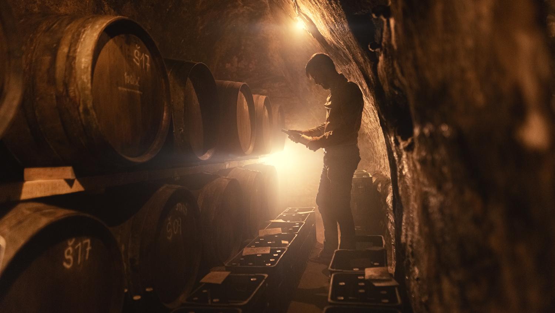 Spalek Winery by Marek Dvorak