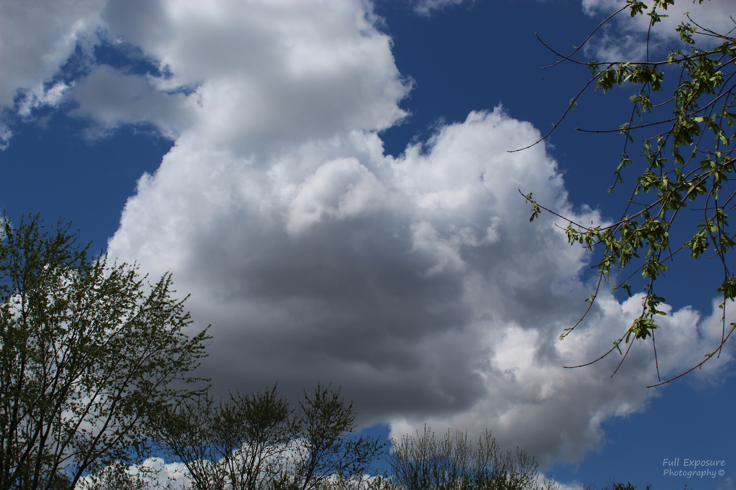 Clouds by Anthony Carbone