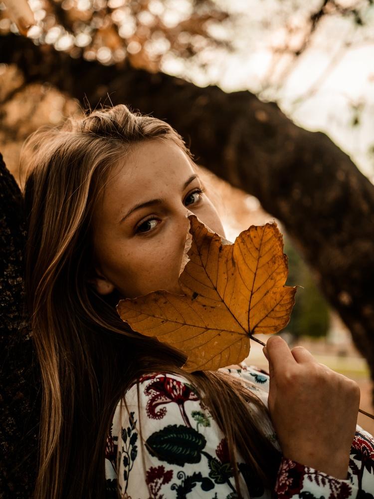 leaf by Viliam Grea