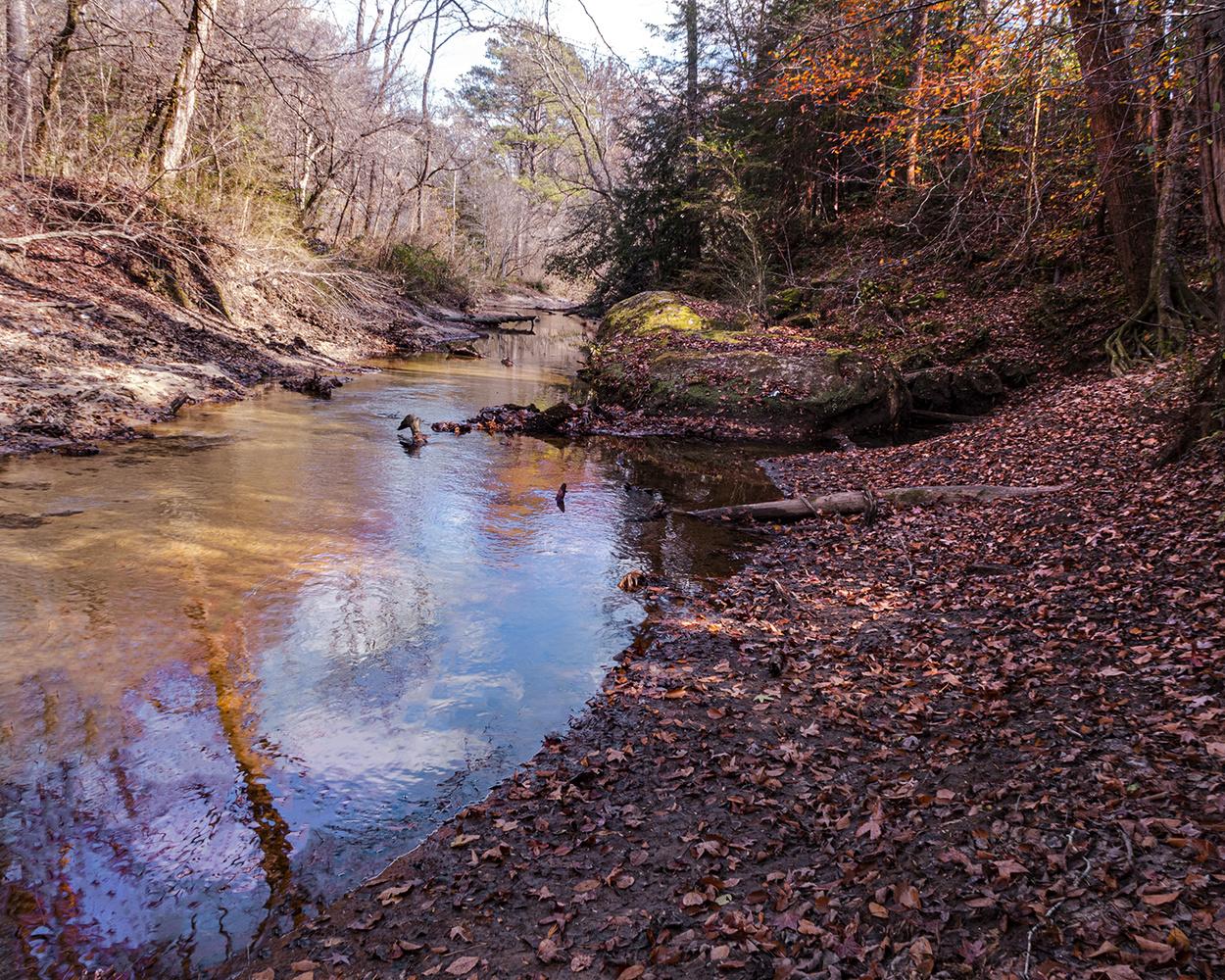 Late fall Sipsy Wilderness by John Pless