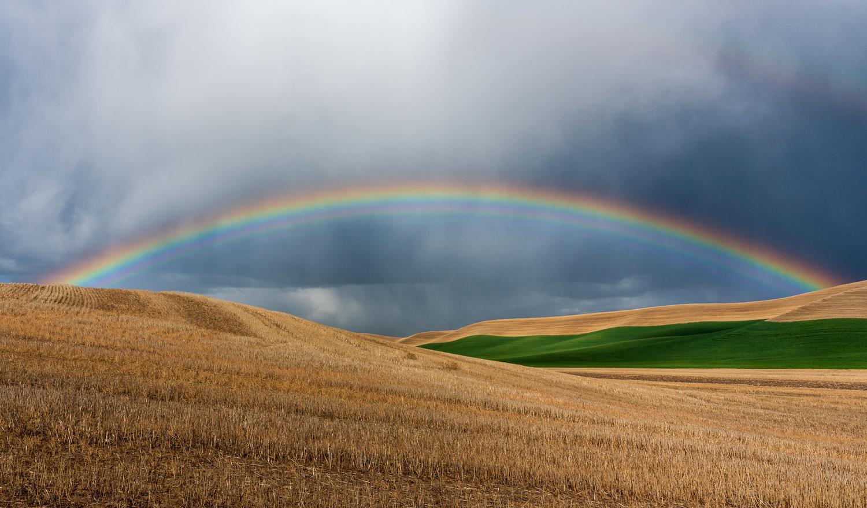 Rainbow by Mauro Bertuol