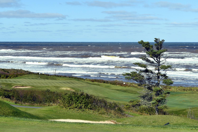 Crowbush Golf Club by Michael Cox