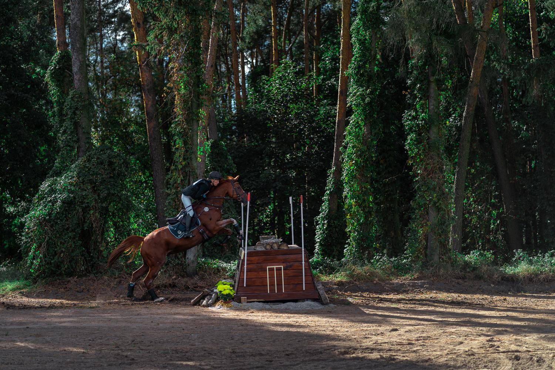 Horse by Eryk Lewandowski