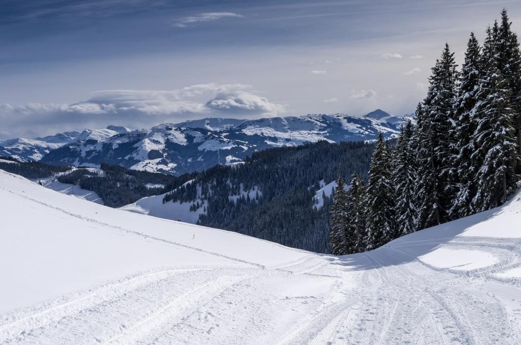 Wald, berg und schnee by Krispijn Scholte