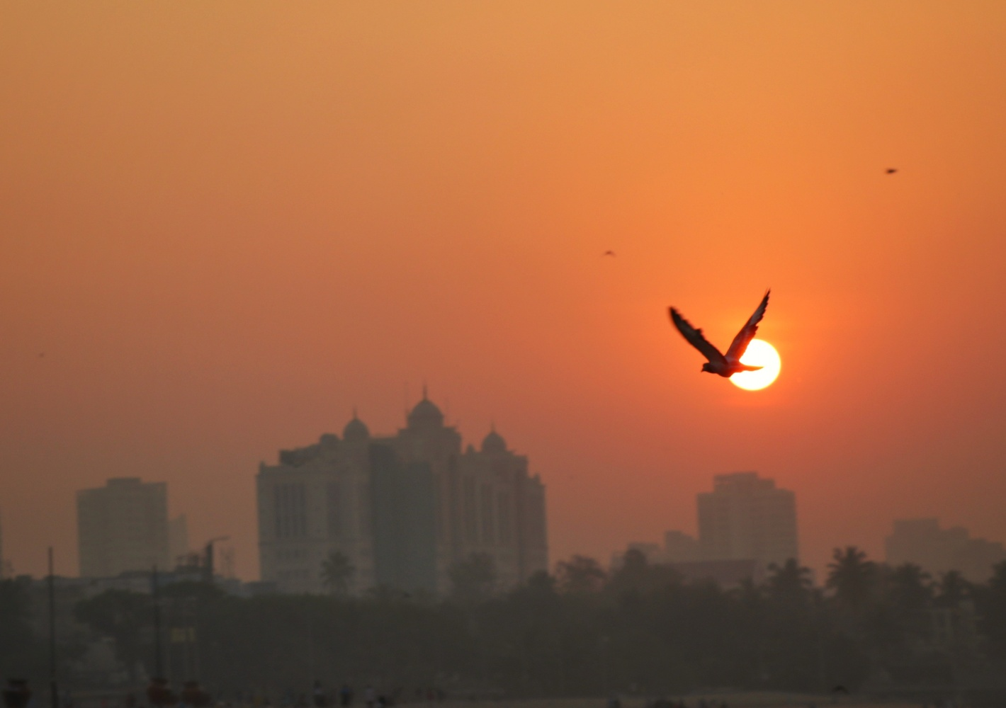 Sunrise by SK Jafir Ali