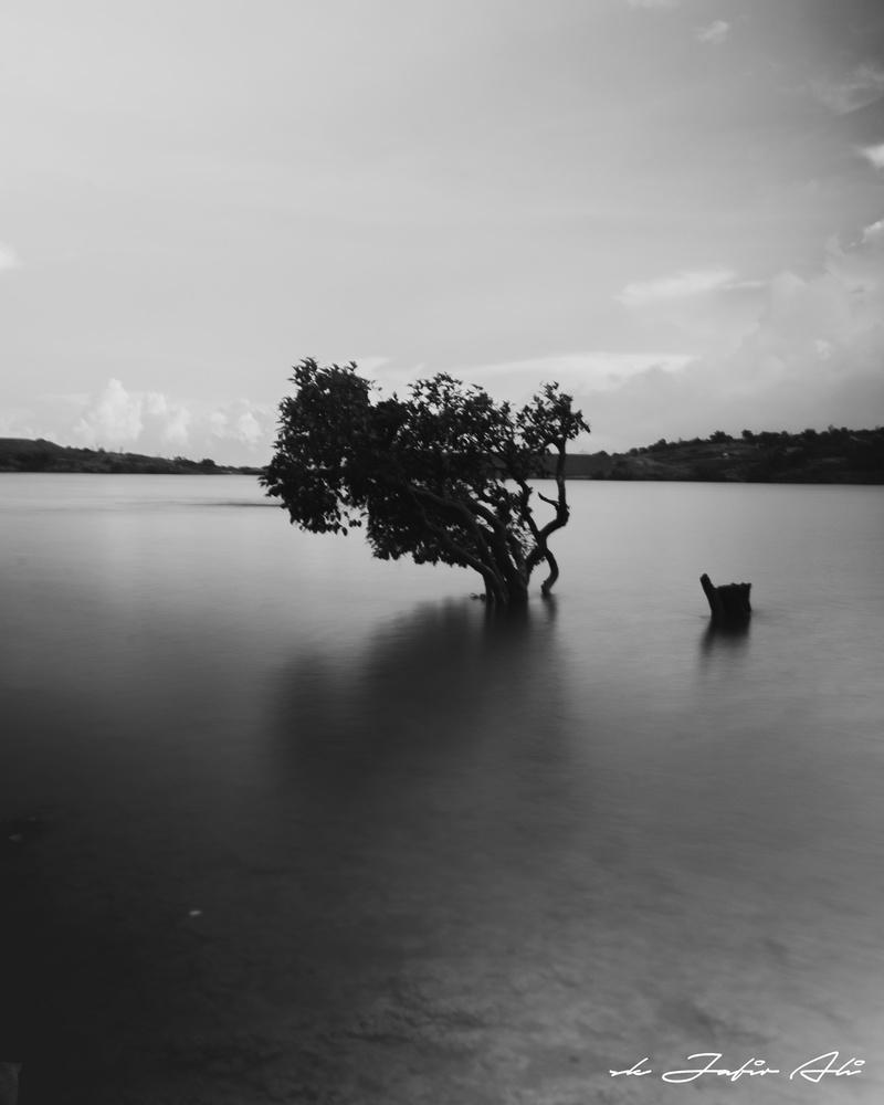 Long Exposure by SK Jafir Ali