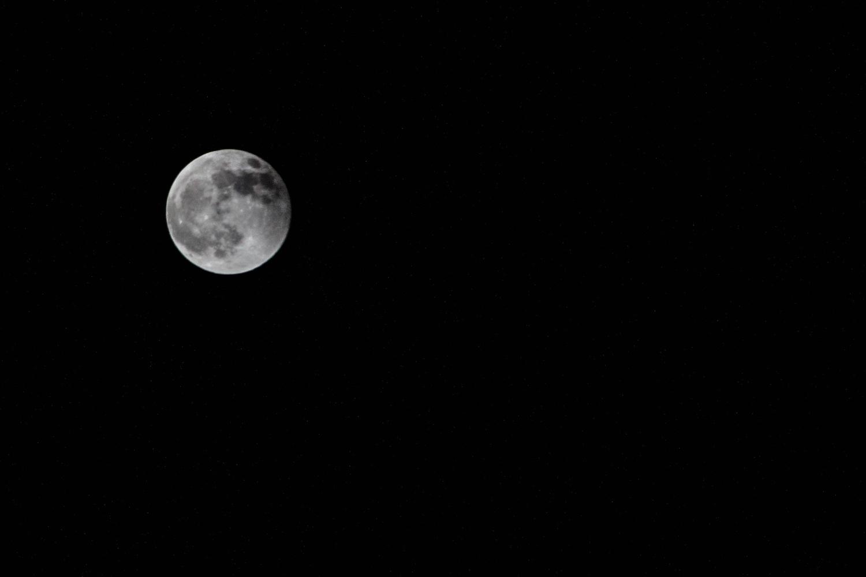 Good Night Moon by Brittney Fulton