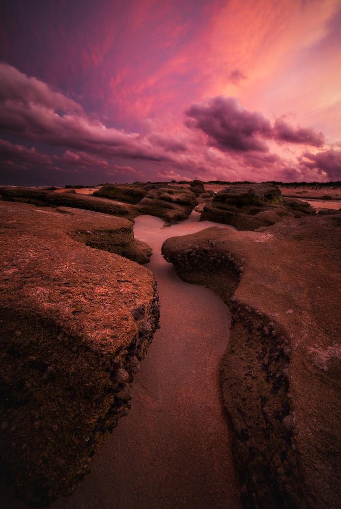 River to Sea Preserve by Paul Farace