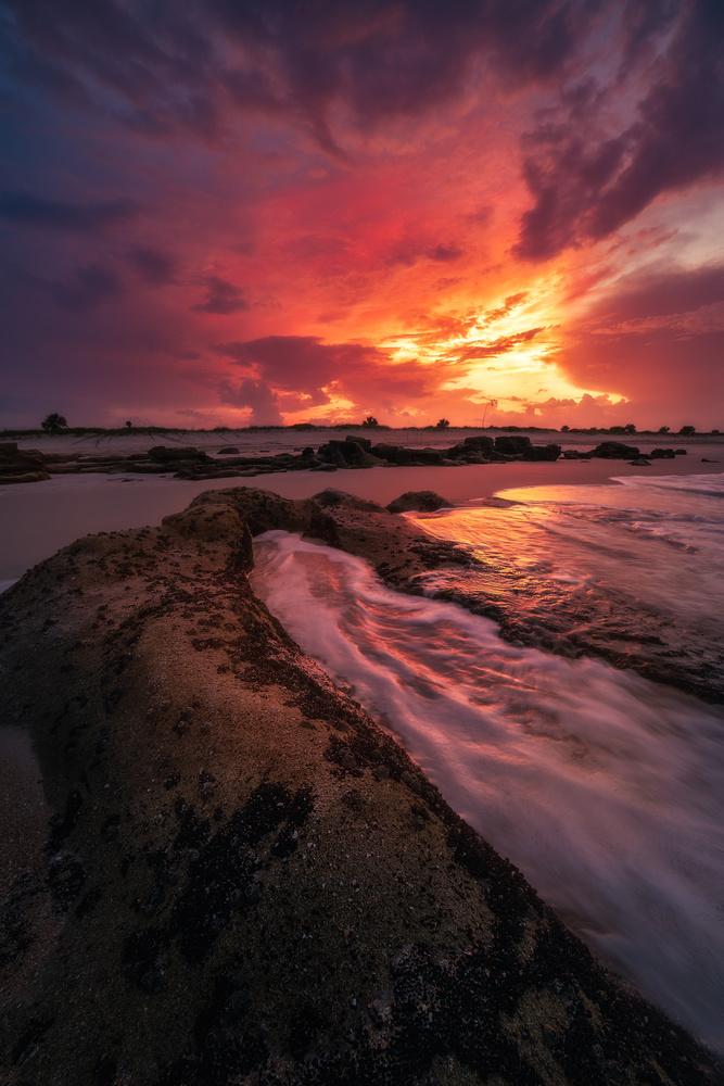 Last Light in Marineland by Paul Farace
