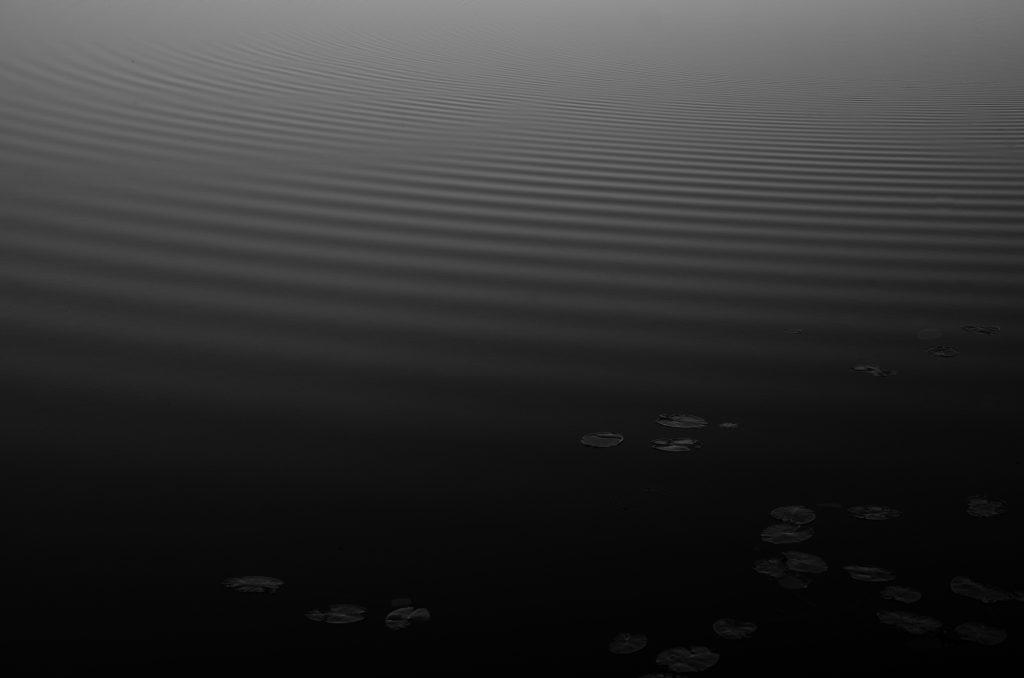 dark ripples by micke holmgren