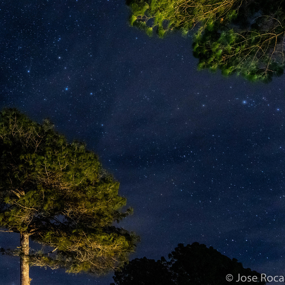 Constelations by Jose Roca
