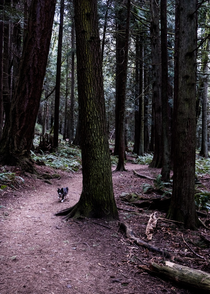 Lurking around the corner by Matthew Edoimioya