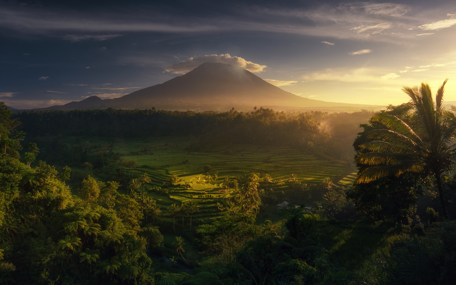 Good morning Bali by jabi sanz