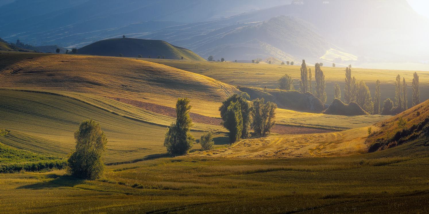 Hills & Trees by jabi sanz