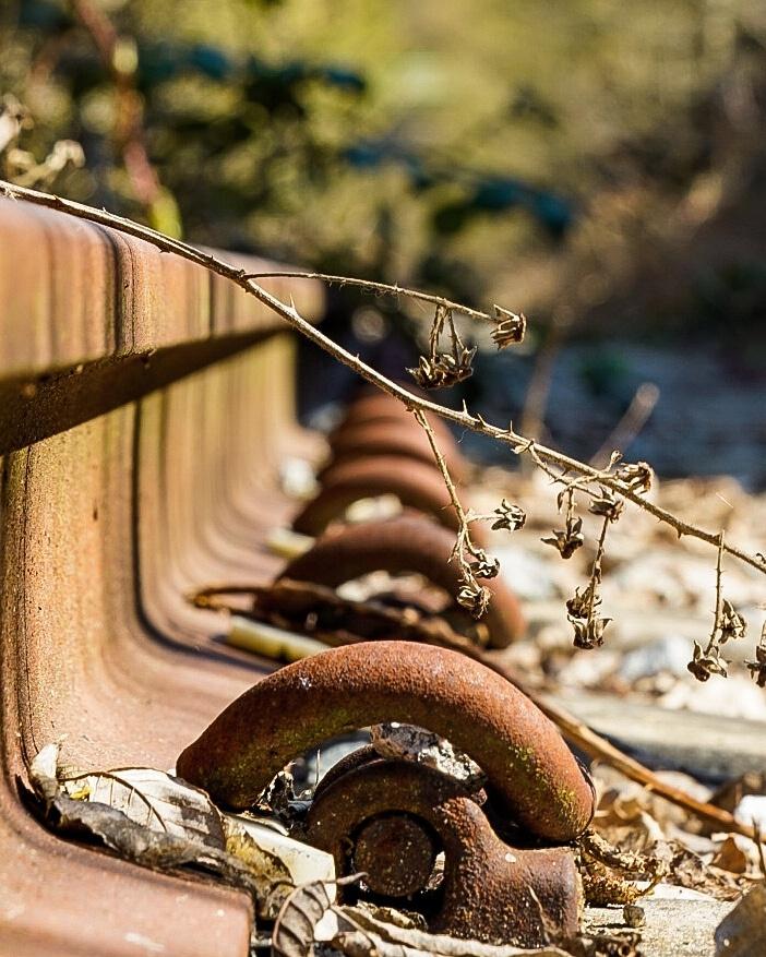Granville railroad by Taylor Hawkins