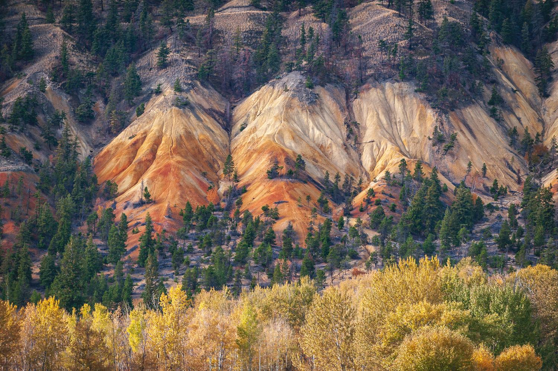 Gold Rush Trails by Alex Christie