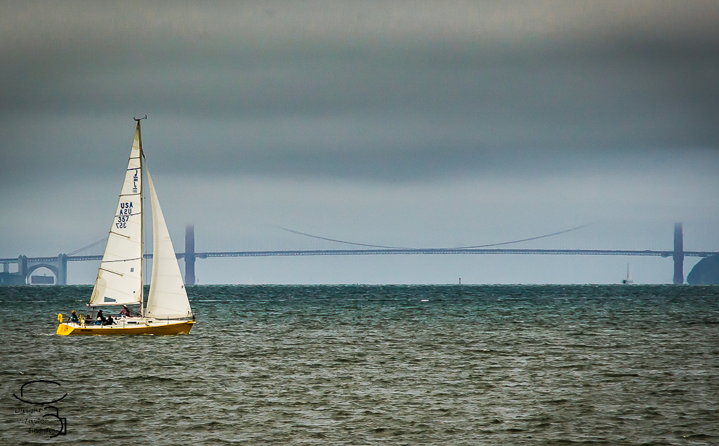 Full Sail by Dwight Taylor
