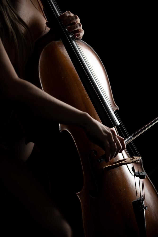 The Celli and the Cellist by Silvio Richetto