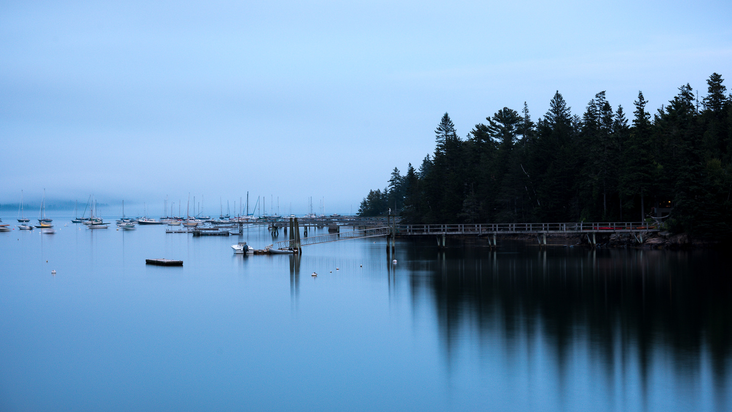 Cool Harbor by Margie Mackrell