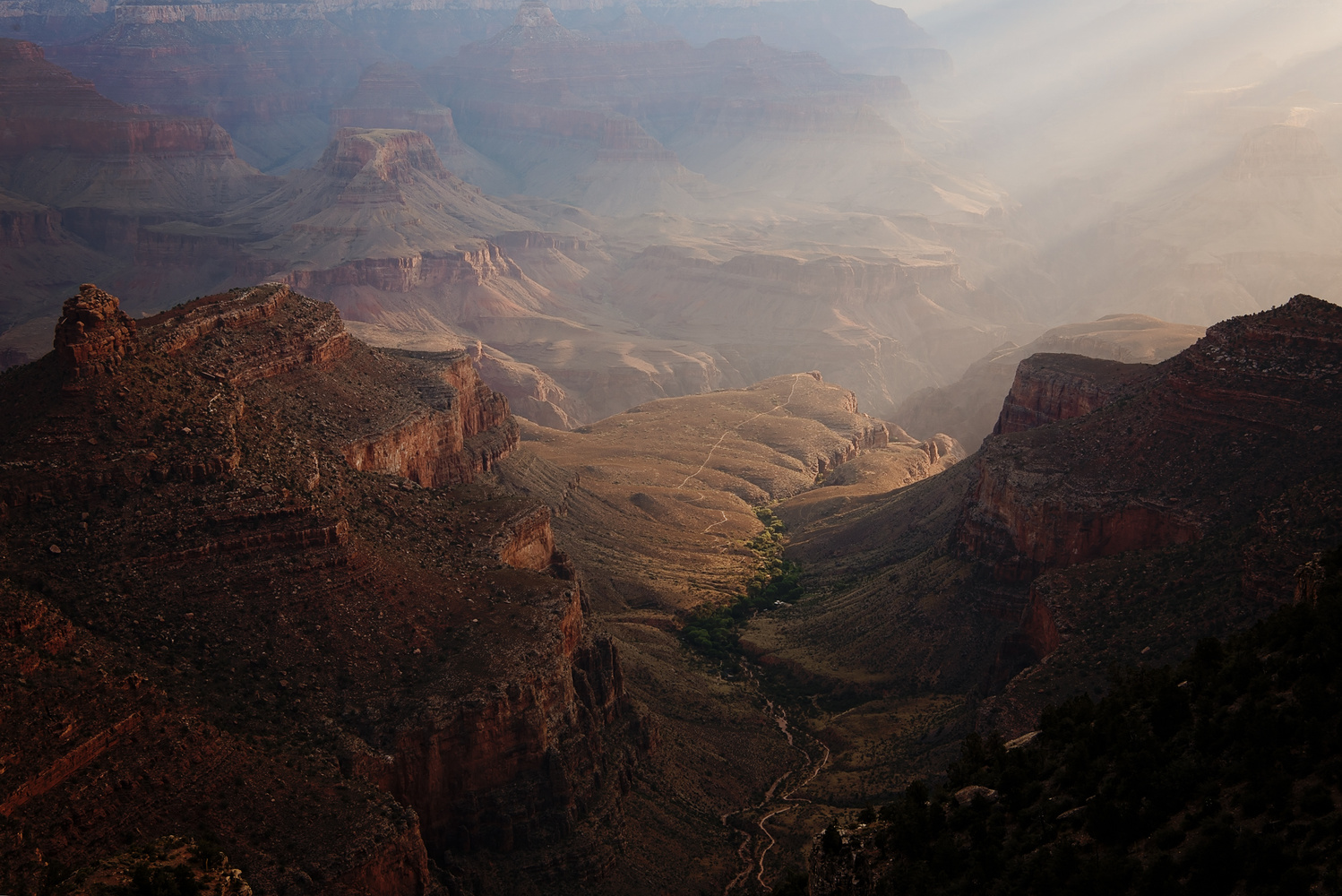 Grand Canyon at Dawn by Margie Mackrell