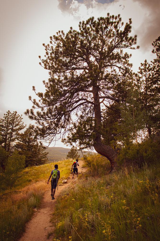 Hike 9 by Abel Getachew