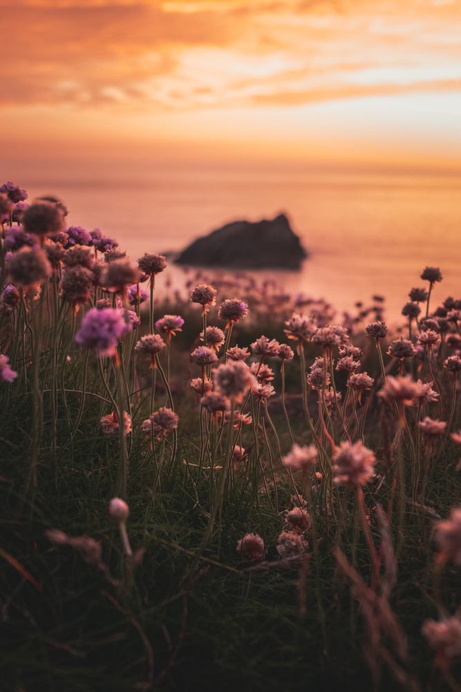 Sunset sea by Ryan Kerr