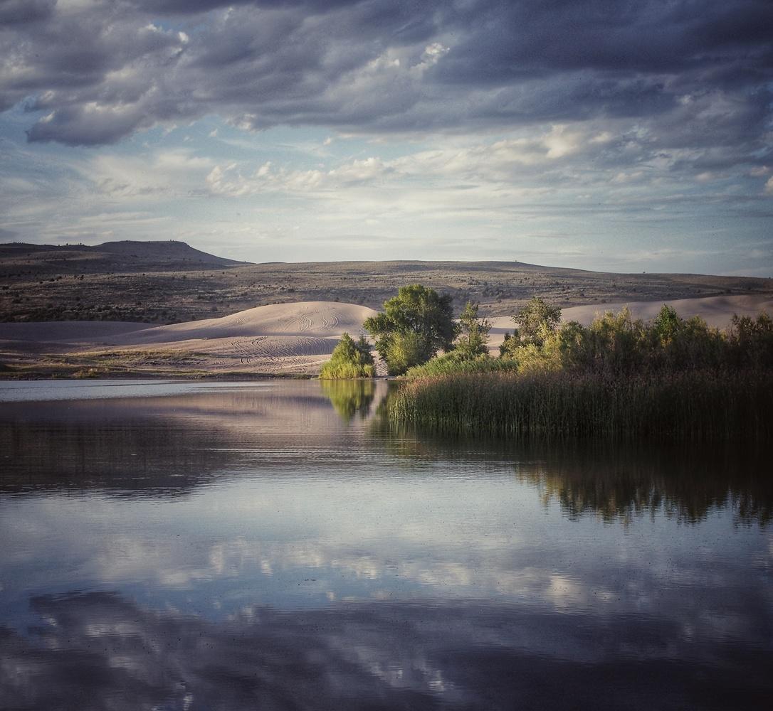 Dune beyond a Lake by J.R. Taylor
