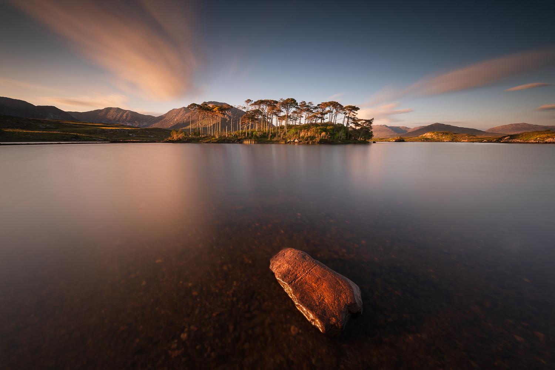 Pine Island by RYSZARD LOMNICKI