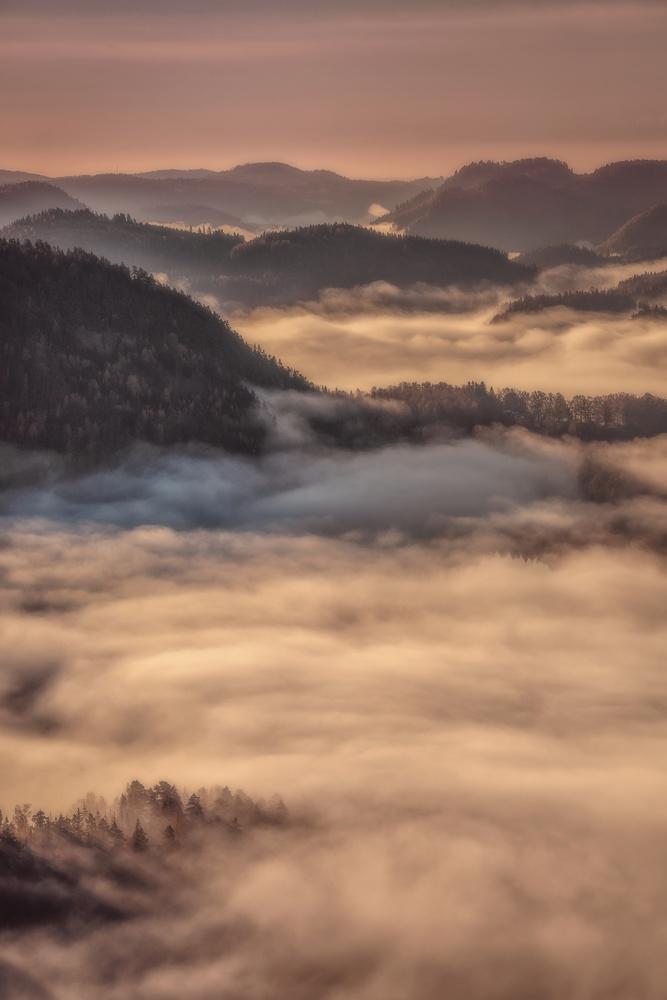 foggylicious by Allan Aasland