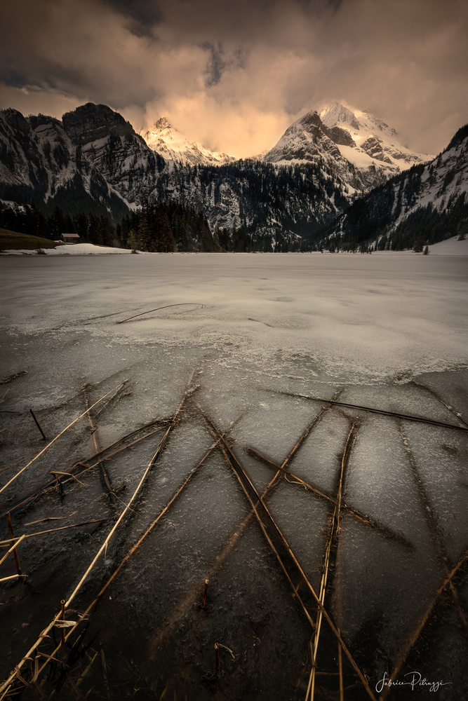 The Blessed Light by Fabrice Petruzzi